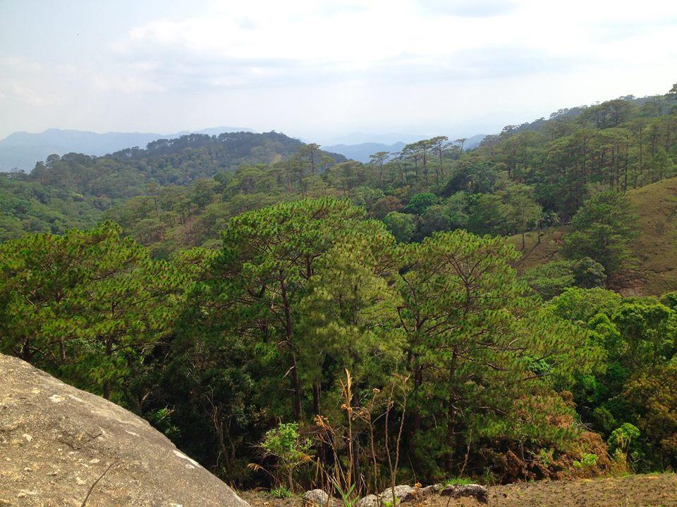 Cung đường trekking đẹp nhất Việt Nam Tà Năng Phan Dũng Mùa cỏ cháy 19