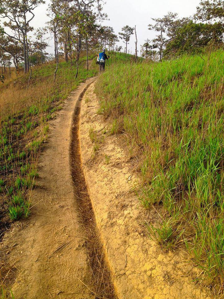 Cung đường trekking đẹp nhất Việt Nam Tà Năng Phan Dũng Mùa cỏ cháy 28