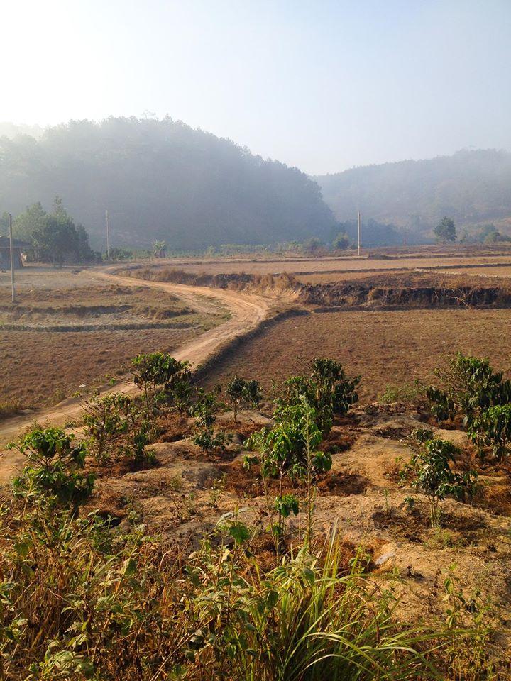 Cung đường trekking đẹp nhất Việt Nam Tà Năng Phan Dũng Mùa cỏ cháy 3