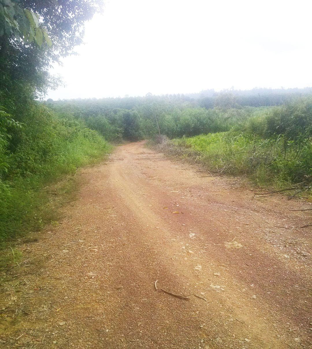 Đoạn đường đất đỏ dài hơn 10km