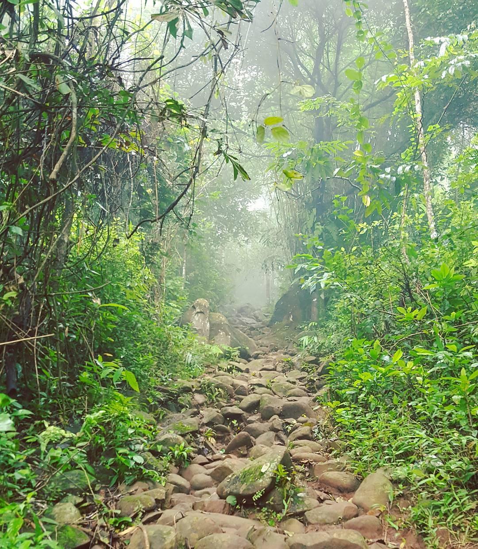 Đường lên núi Bà Đen trong 1 ngày trời đầy sương mù