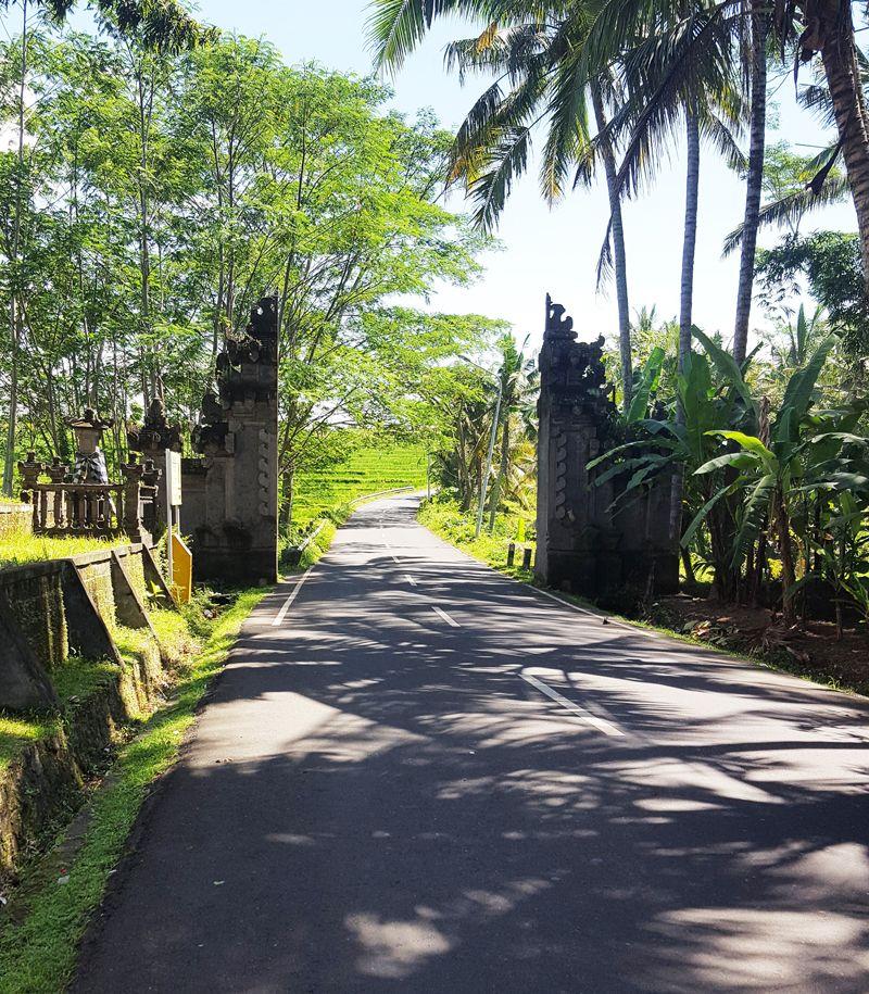 Chia sẻ kinh nghiệm du lịch bụi Bali - hình 4