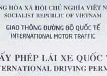 Hướng dẫn đăng ký cấp giấy phép lái xe quốc tế 1