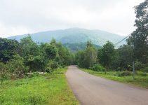 Hướng-dẫn-leo-núi-Chứa-Chan-dễ-nhất-đi-đường-ngắn-nhất-hình-1