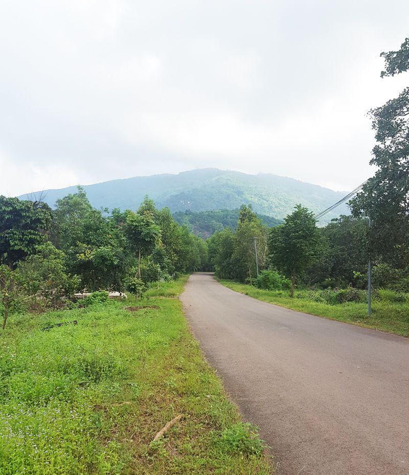 Hướng dẫn leo núi Chứa Chan dễ nhất đi đường ngắn nhất hình 1