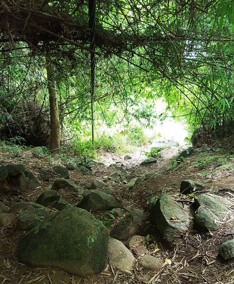 Hướng dẫn leo núi Chứa Chan dễ nhất đi đường ngắn nhất hình 10