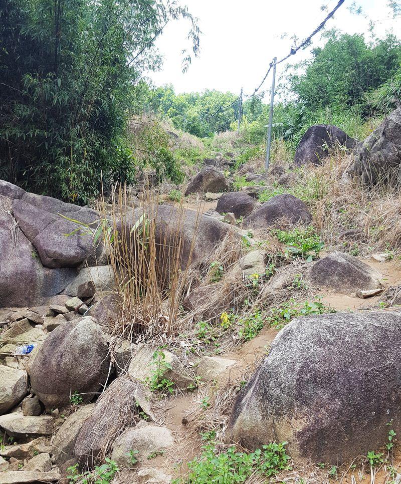 Hướng dẫn leo núi Chứa Chan dễ nhất đi đường ngắn nhất hình 14