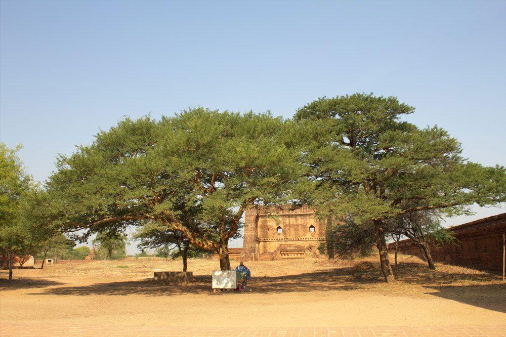 Chia sẻ kinh nghiệm du lịch bụi Myanmar 12 - Đền DhammaYangyi