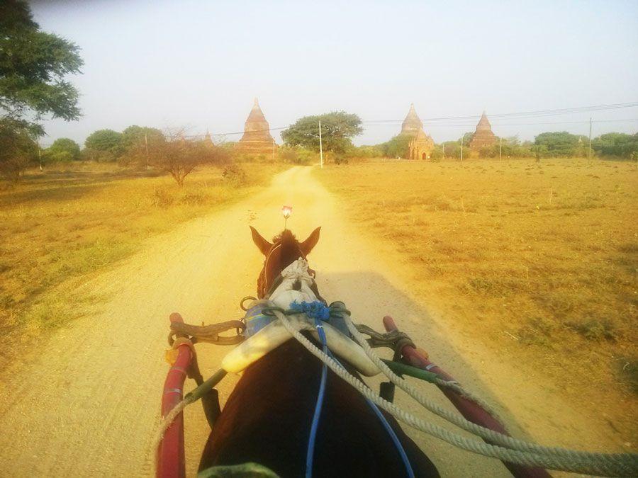 Chia sẻ kinh nghiệm du lịch bụi Myanmar 13 - Đi xe ngựa ở Bagan