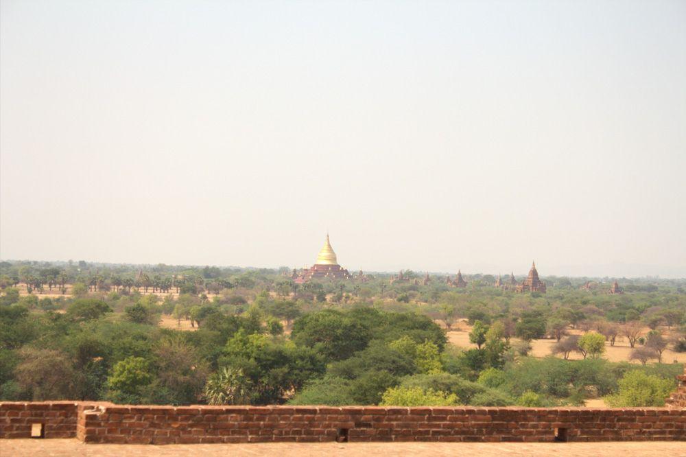 Chia sẻ kinh nghiệm du lịch bụi Myanmar 14 - chùa Shwezigon