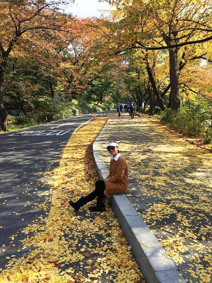 Chia sẻ kinh nghiệm du lịch bụi Hàn Quốc trong 8 ngày - hình 14 - Khu N-Seoul