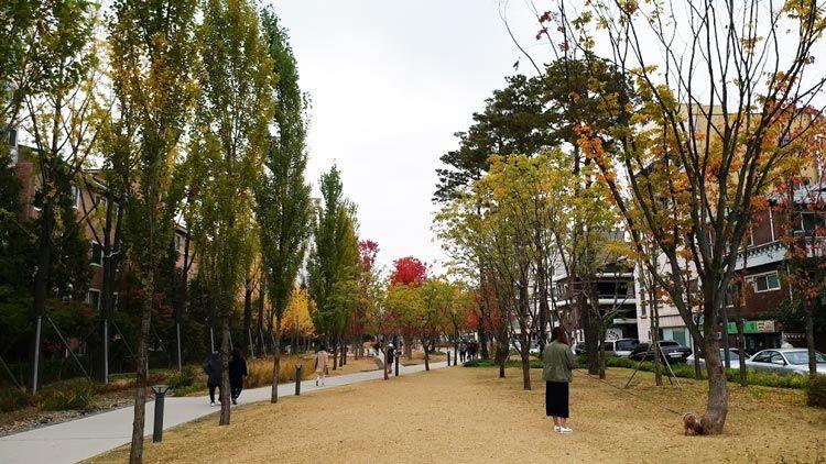 Chia sẻ kinh nghiệm du lịch bụi Hàn Quốc trong 8 ngày - hình 2 - Khu công viên Hongik