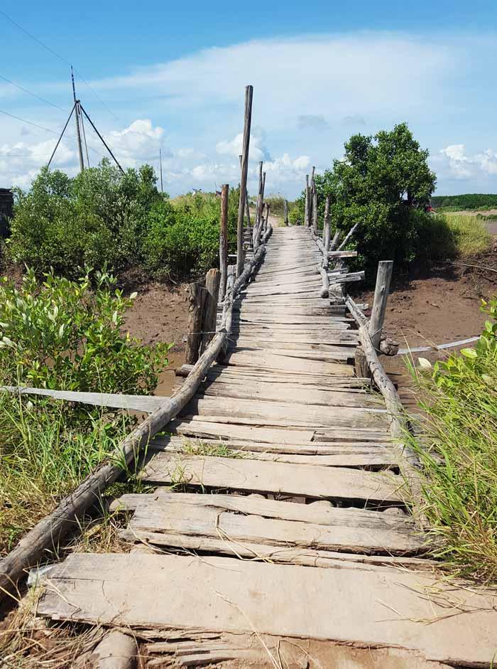 Khám phá 9 cửa sông của hệ thống sông Cửu Long 15 - Cây cầu gỗ