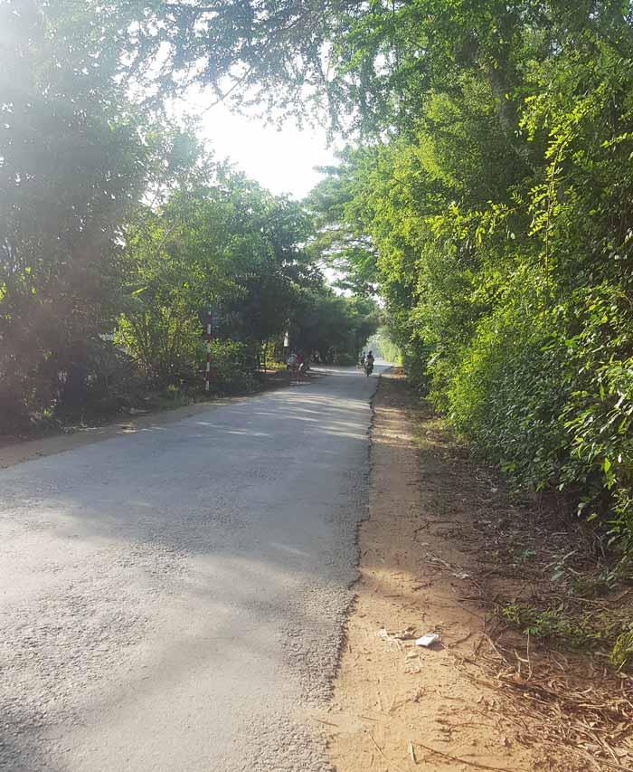 Khám phá 9 cửa sông của hệ thống sông Cửu Long 36 - Đường làng sáng sớm