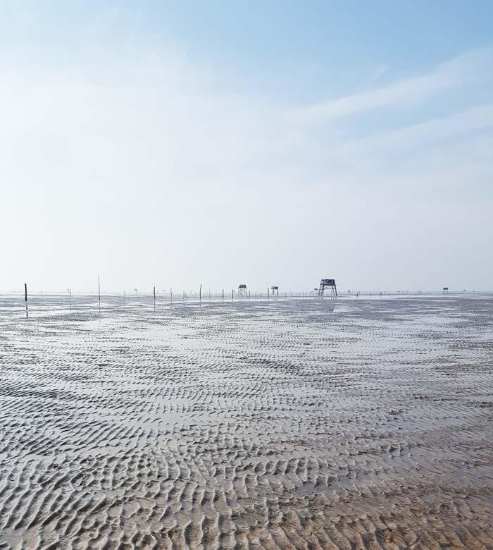 Khám phá 9 cửa sông của hệ thống sông Cửu Long 4 - Cầu cảng biển Tân Thành