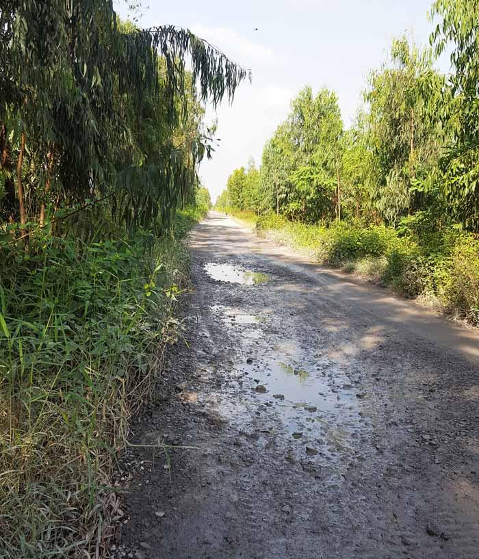 Khám phá 9 cửa sông của hệ thống sông Cửu Long 5 - Đươfng từ bến Đèn Đỏ qua Bến Chùa