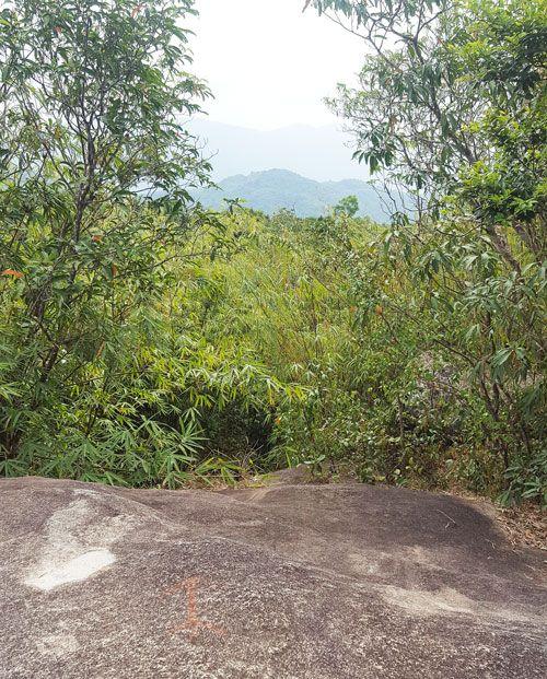 Chia sẻ kinh nghiệm leo núi Thị Vải - Đỉnh núi Thị Vải 3