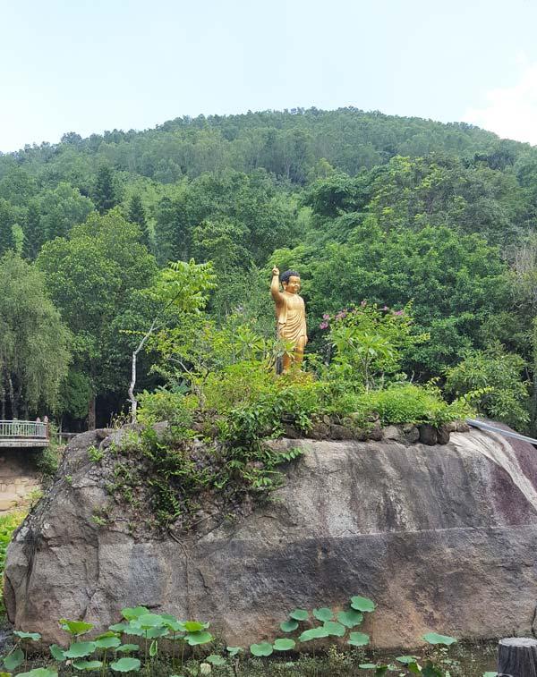 Chia sẻ kinh nghiệm leo núi Thị Vải 20 - Tượng phật trong hồ sen