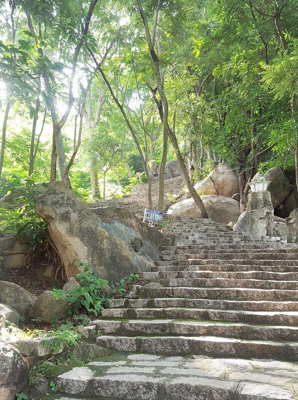 Chia sẻ kinh nghiệm leo núi Thị Vải 7 - Bậc cấp lên núi